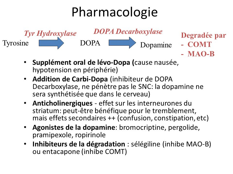 Pharmacologie DOPA Decarboxylase Tyr Hydroxylase Degradée par - COMT
