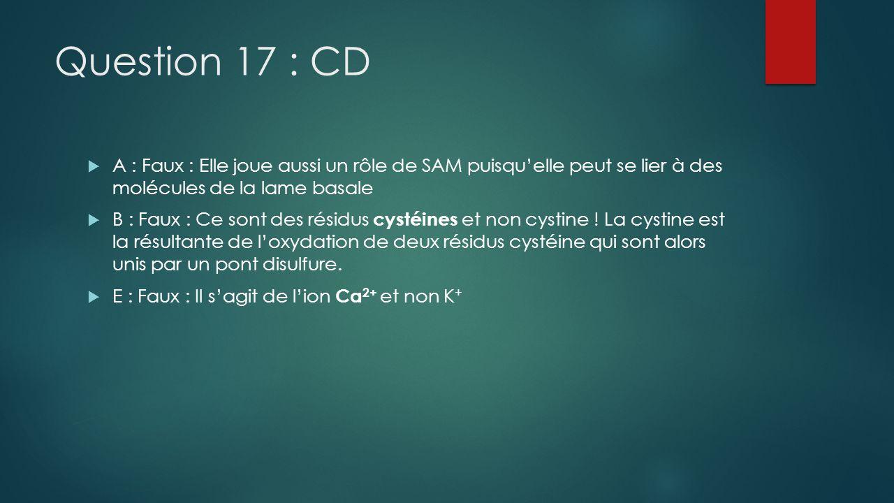 Question 17 : CD A : Faux : Elle joue aussi un rôle de SAM puisqu'elle peut se lier à des molécules de la lame basale.