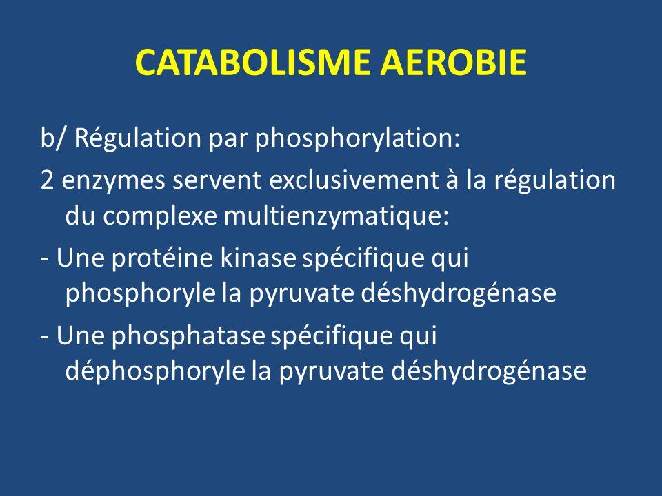 CATABOLISME AEROBIE