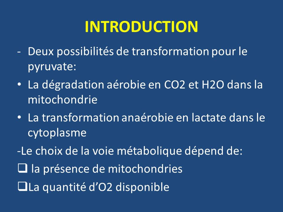 INTRODUCTION Deux possibilités de transformation pour le pyruvate: