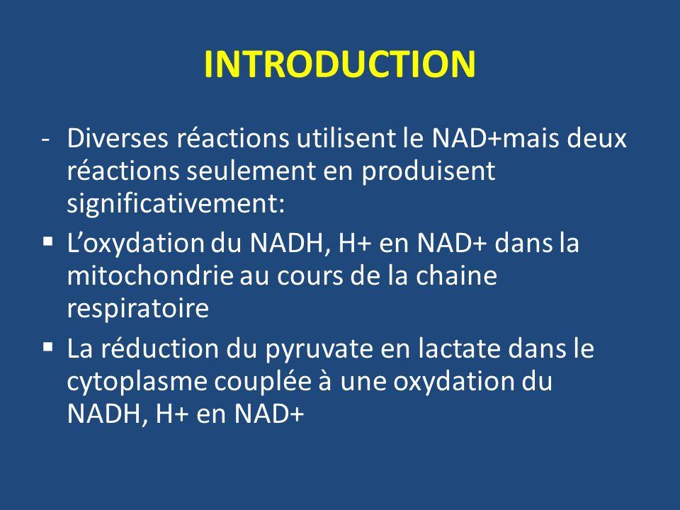 INTRODUCTION Diverses réactions utilisent le NAD+mais deux réactions seulement en produisent significativement: