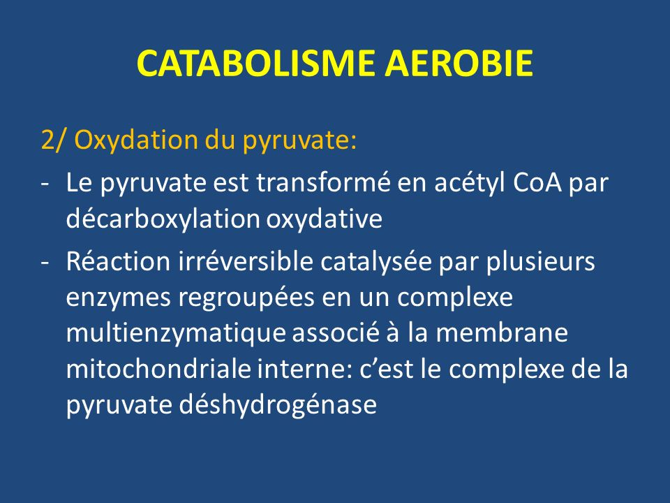 CATABOLISME AEROBIE 2/ Oxydation du pyruvate: