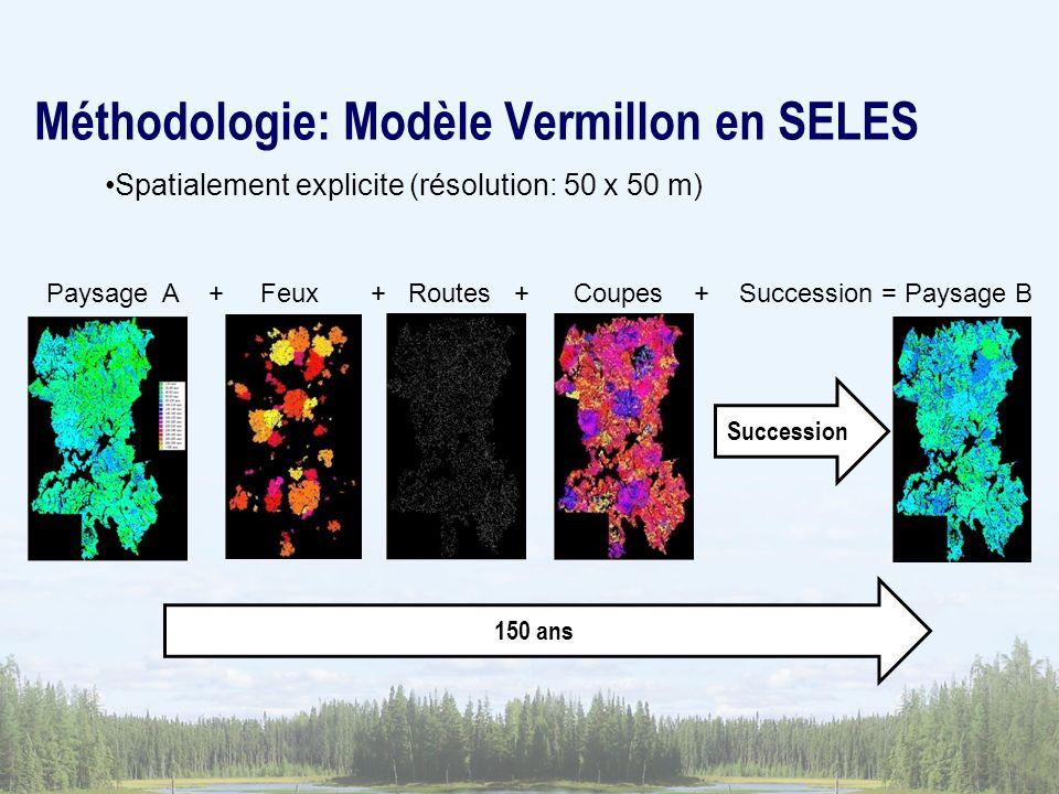 Méthodologie: Modèle Vermillon en SELES