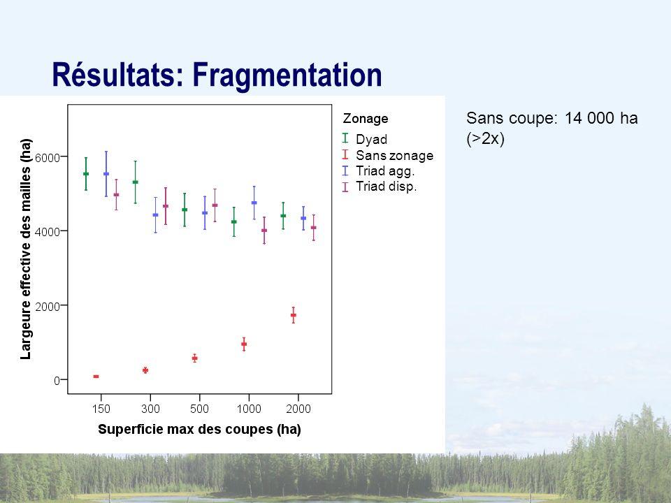 Résultats: Fragmentation