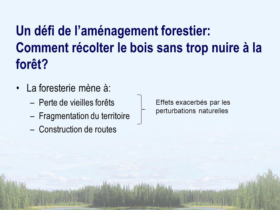 Un défi de l'aménagement forestier: Comment récolter le bois sans trop nuire à la forêt