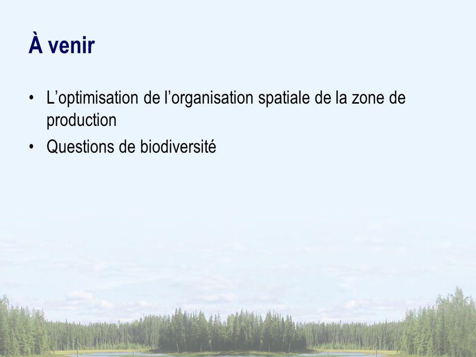 À venir L'optimisation de l'organisation spatiale de la zone de production.