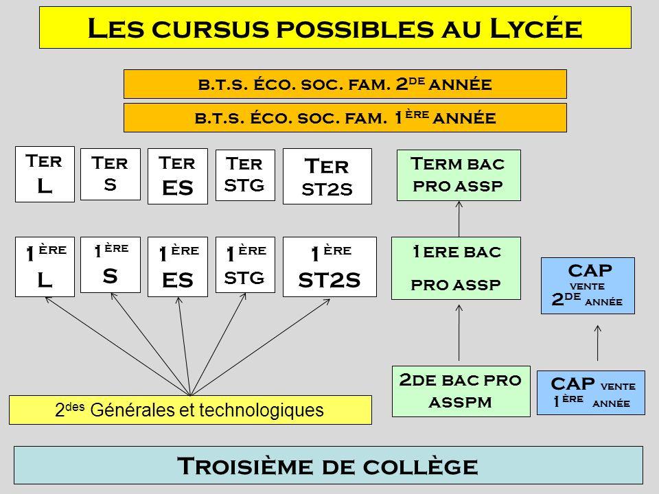 Les cursus possibles au Lycée