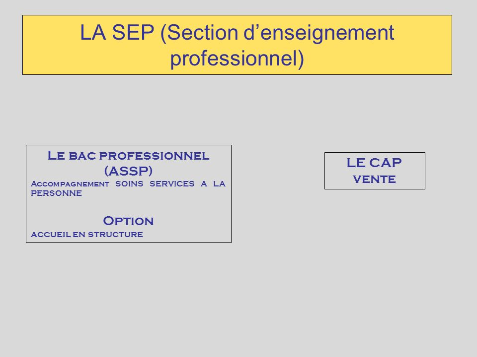 LA SEP (Section d'enseignement professionnel)