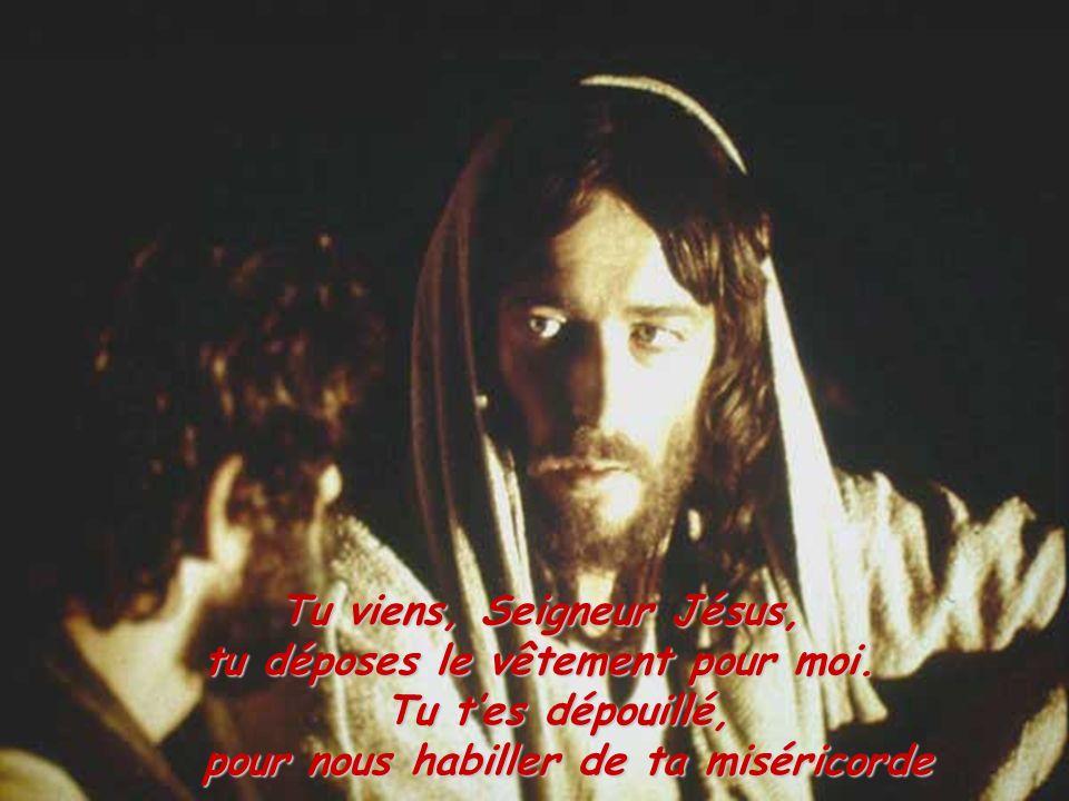 Tu viens, Seigneur Jésus, tu déposes le vêtement pour moi.
