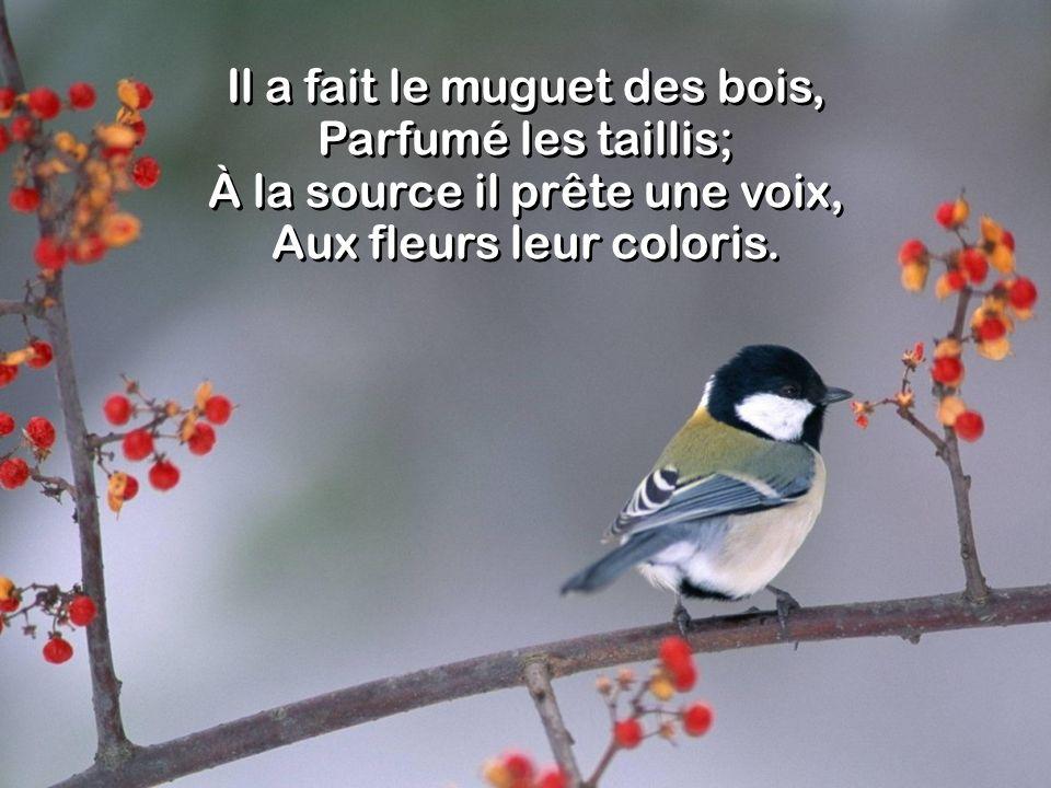 Il a fait le muguet des bois, Parfumé les taillis; À la source il prête une voix, Aux fleurs leur coloris.
