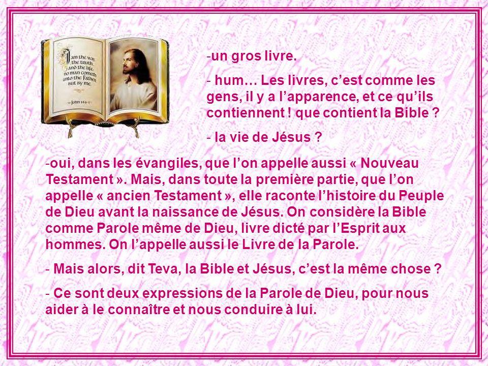 un gros livre. hum… Les livres, c'est comme les gens, il y a l'apparence, et ce qu'ils contiennent ! que contient la Bible