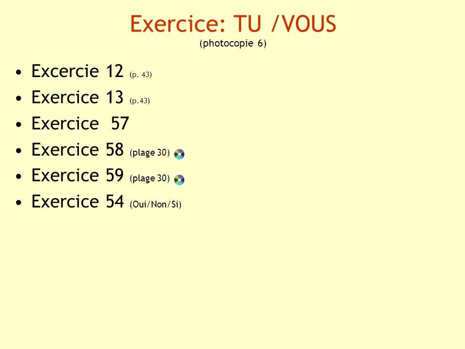 Exercice: TU /VOUS (photocopie 6)