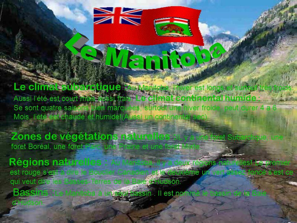 Le Manitoba Le climat subarctique :Au Manitoba, l'hiver est longs et surtout très froids.