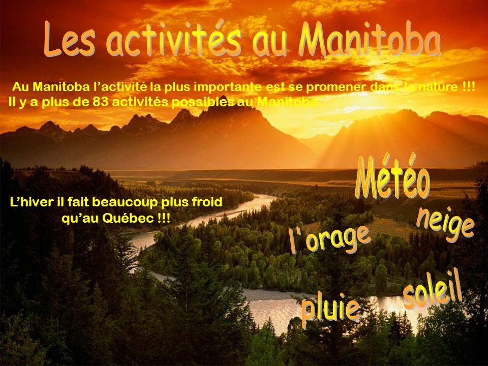 Les activités au Manitoba