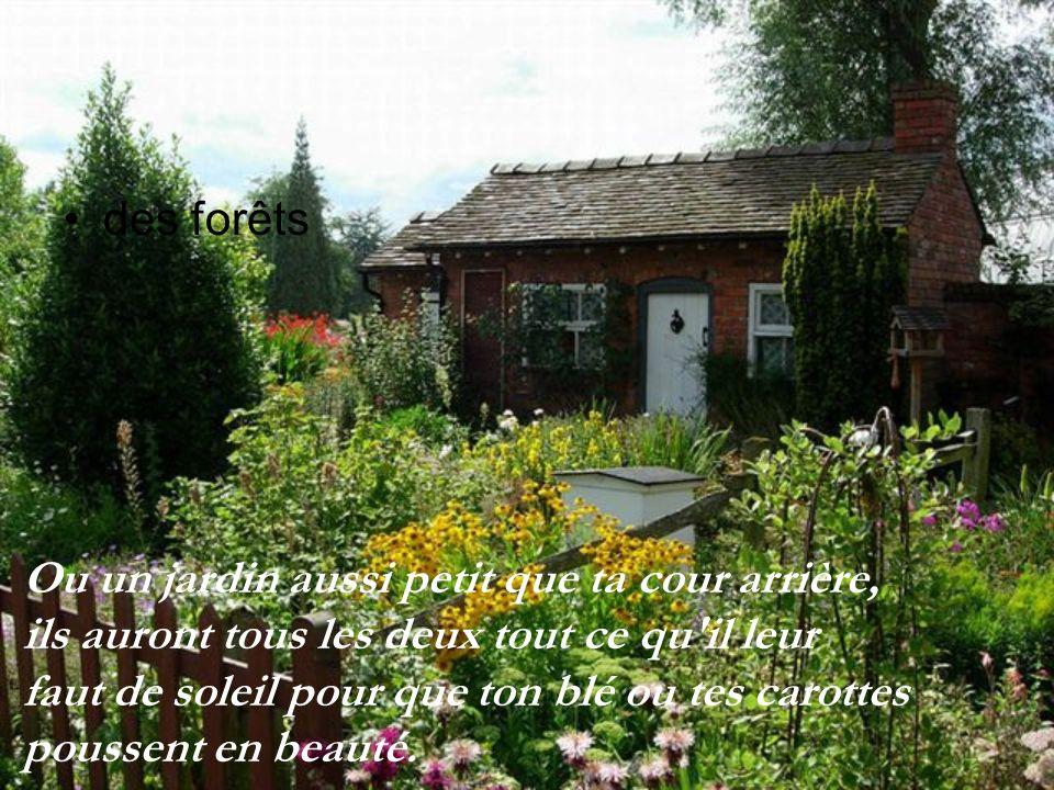 des forêts Ou un jardin aussi petit que ta cour arrière, ils auront tous les deux tout ce qu il leur.