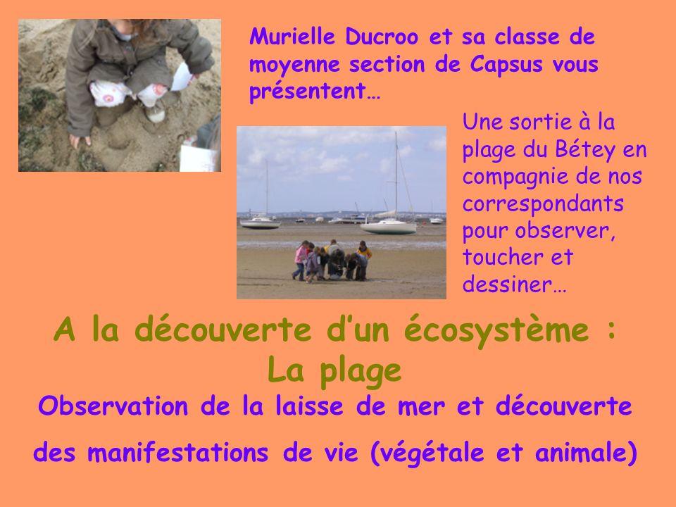 Murielle Ducroo et sa classe de moyenne section de Capsus vous présentent…