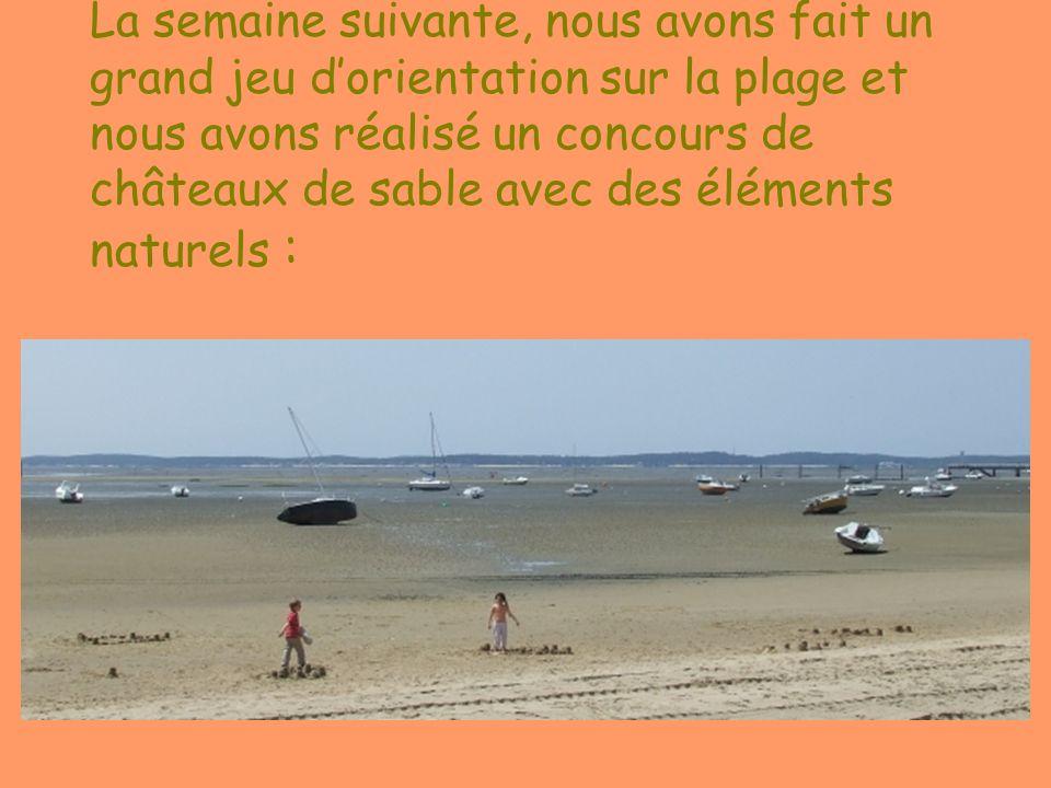 La semaine suivante, nous avons fait un grand jeu d'orientation sur la plage et nous avons réalisé un concours de châteaux de sable avec des éléments naturels :