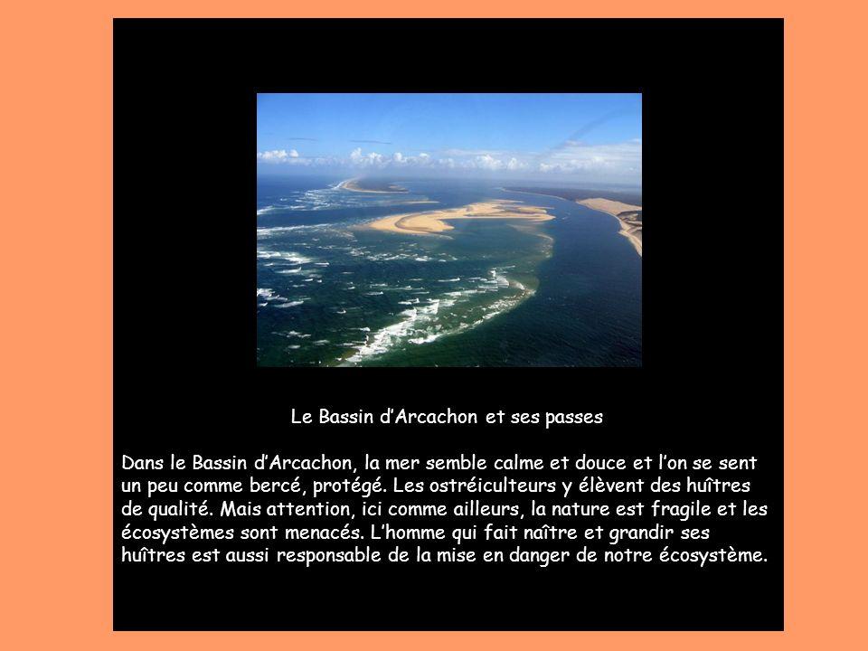 Le Bassin d'Arcachon et ses passes