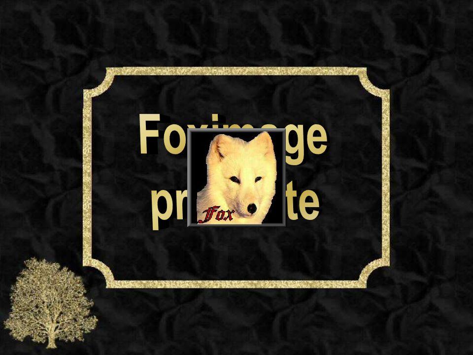 Foximage présente