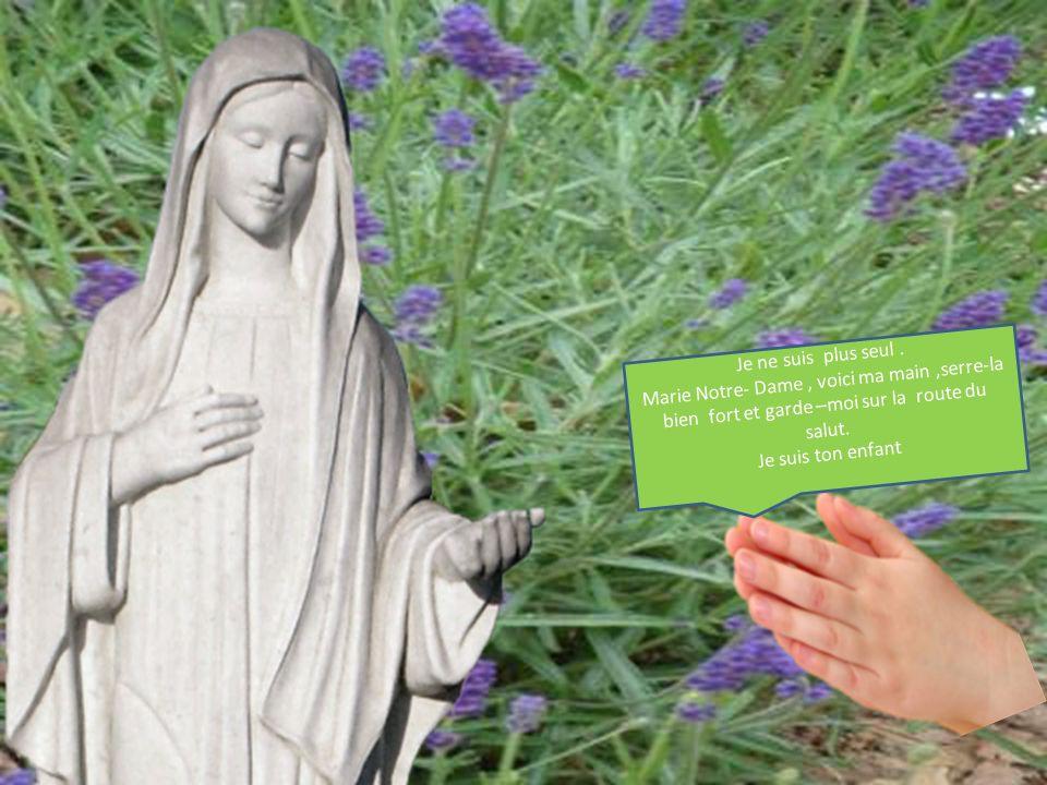 Je ne suis plus seul . Marie Notre- Dame , voici ma main ,serre-la bien fort et garde –moi sur la route du salut.