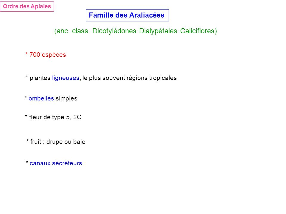 Famille des Araliacées