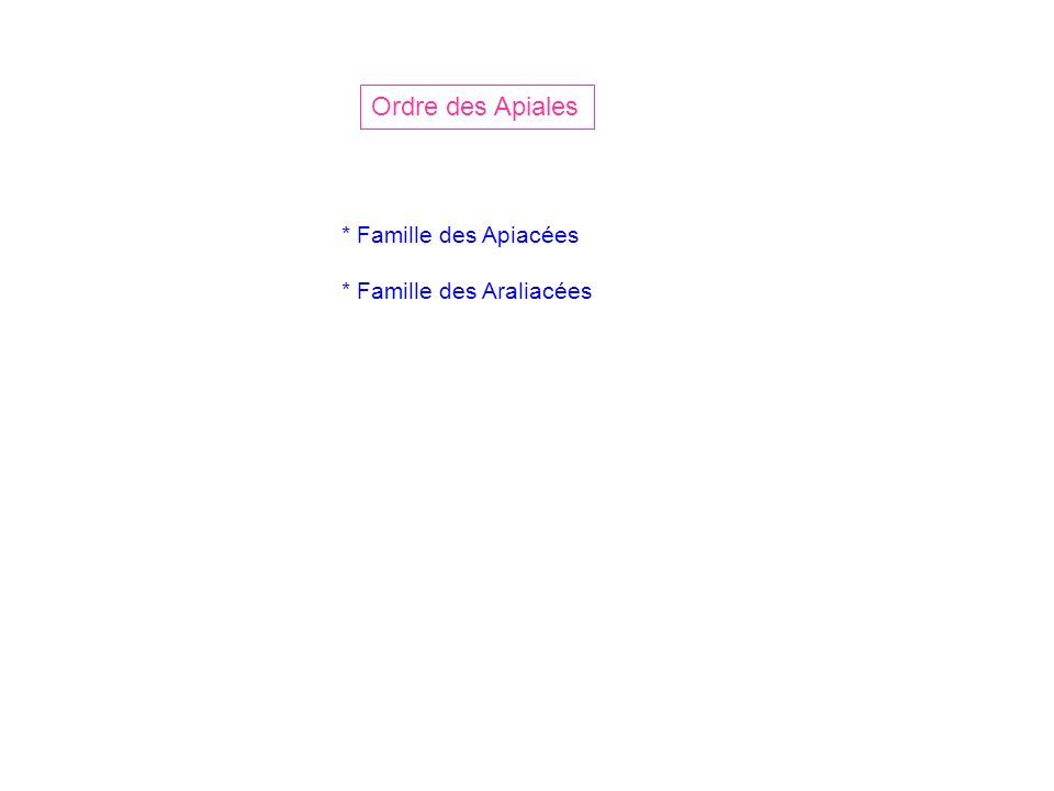 Ordre des Apiales * Famille des Apiacées * Famille des Araliacées