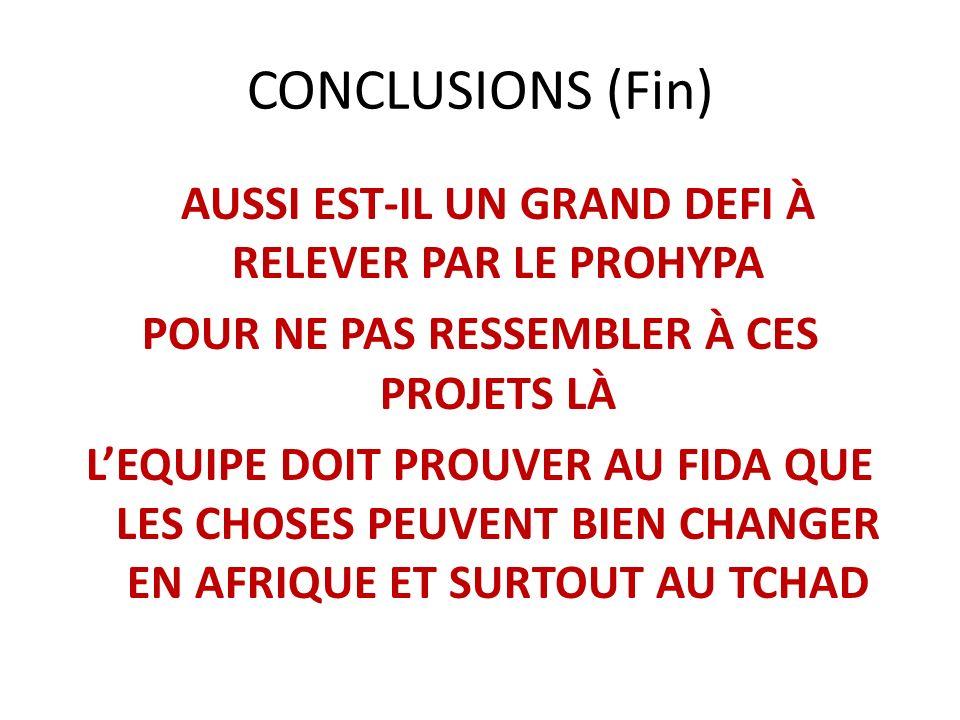 CONCLUSIONS (Fin) POUR NE PAS RESSEMBLER À CES PROJETS LÀ