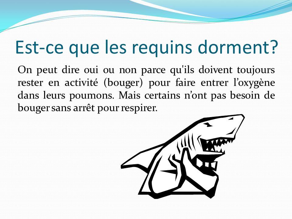 Est-ce que les requins dorment