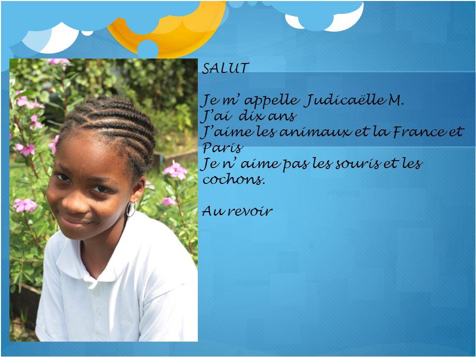 SALUT Je m' appelle Judicaëlle M. J'ai dix ans. J'aime les animaux et la France et Paris. Je n' aime pas les souris et les cochons.