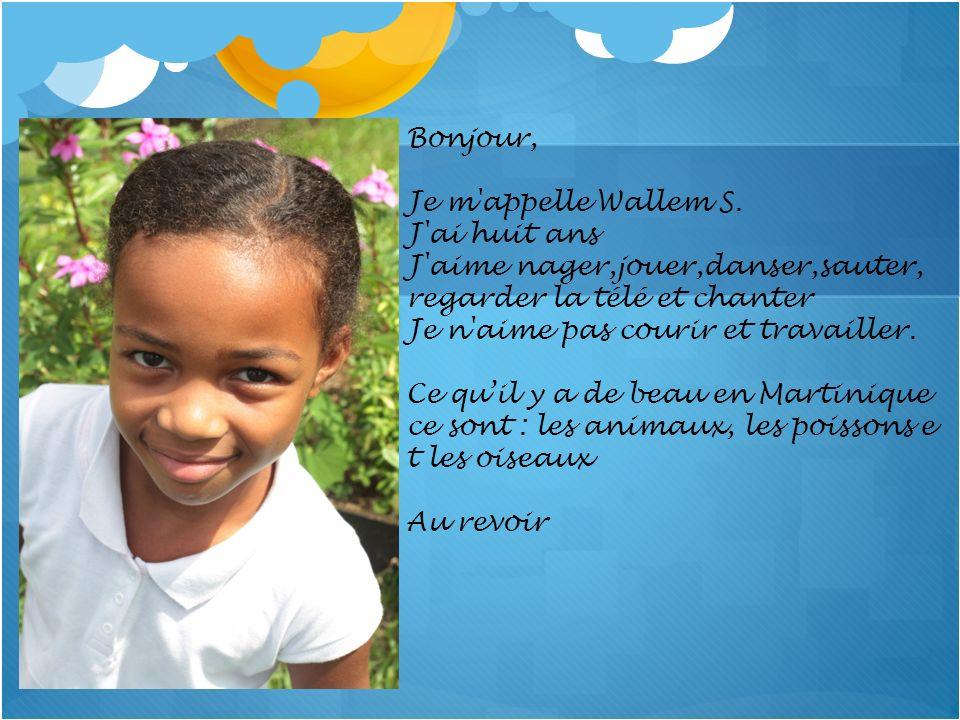 Bonjour, Je m appelle Wallem S. J ai huit ans. J aime nager,jouer,danser,sauter, regarder la télé et chanter.