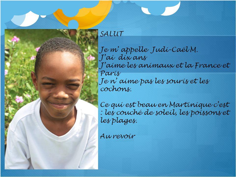 SALUT Je m' appelle Judi-Caël M. J'ai dix ans. J'aime les animaux et la France et Paris. Je n' aime pas les souris et les cochons.