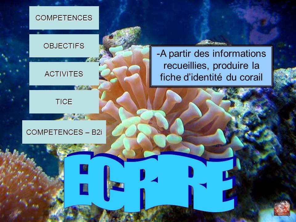 COMPETENCES OBJECTIFS. -A partir des informations recueillies, produire la fiche d'identité du corail.