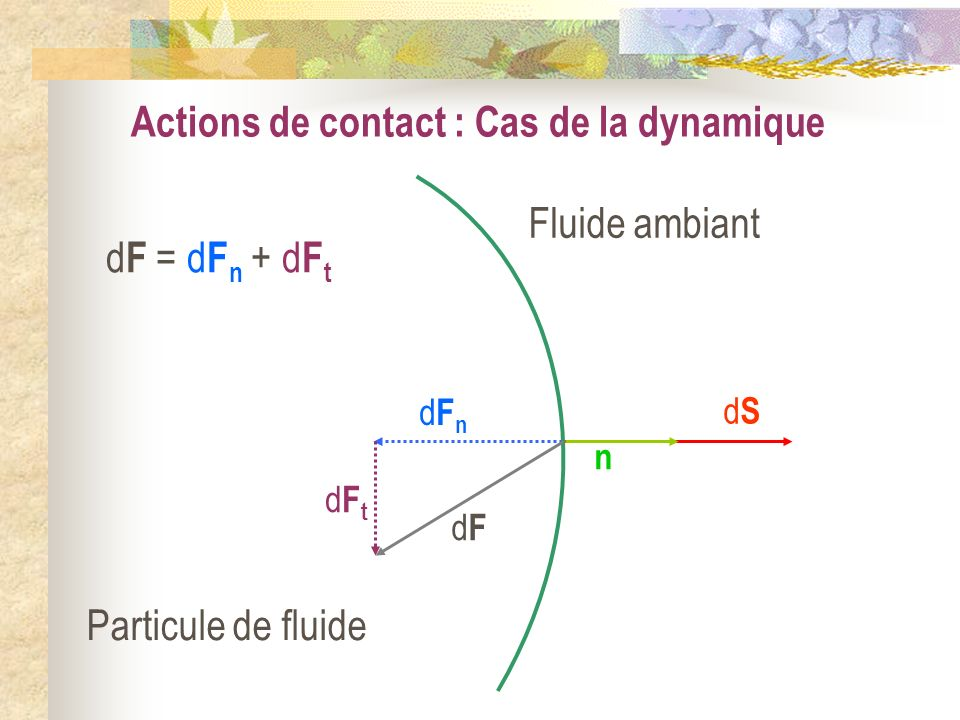 Actions de contact : Cas de la dynamique