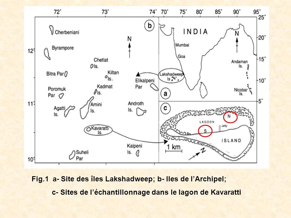 Fig.1 a- Site des îles Lakshadweep; b- Iles de l'Archipel;