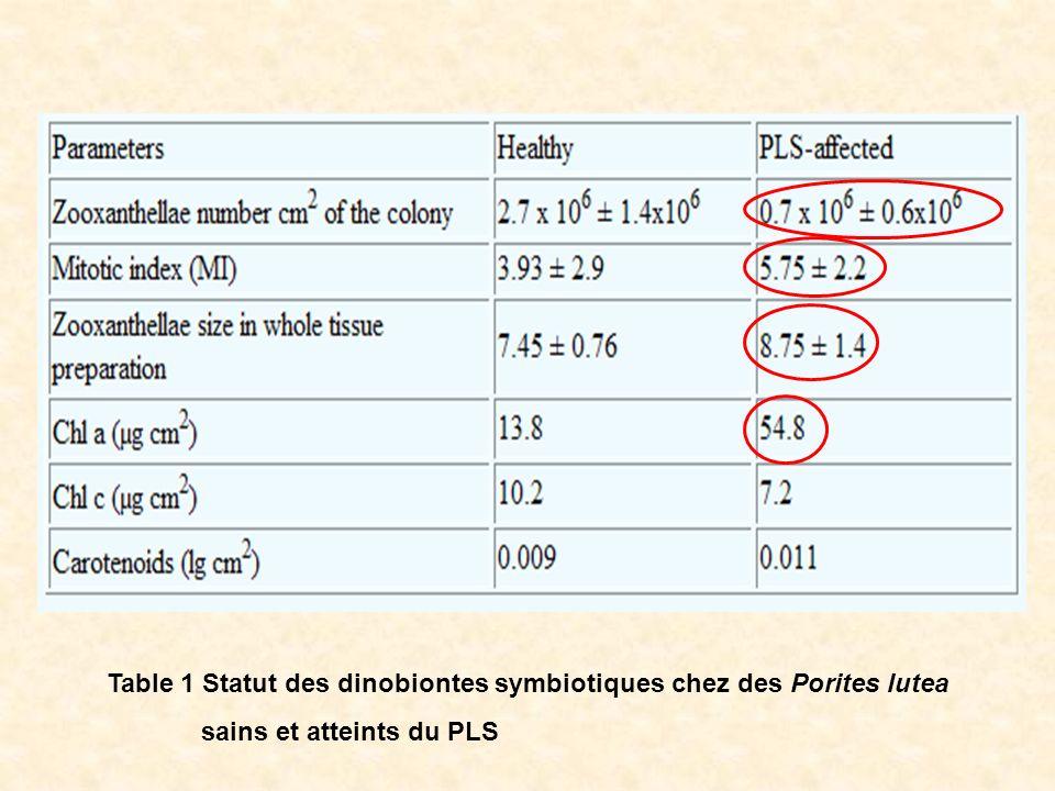 Table 1 Statut des dinobiontes symbiotiques chez des Porites lutea