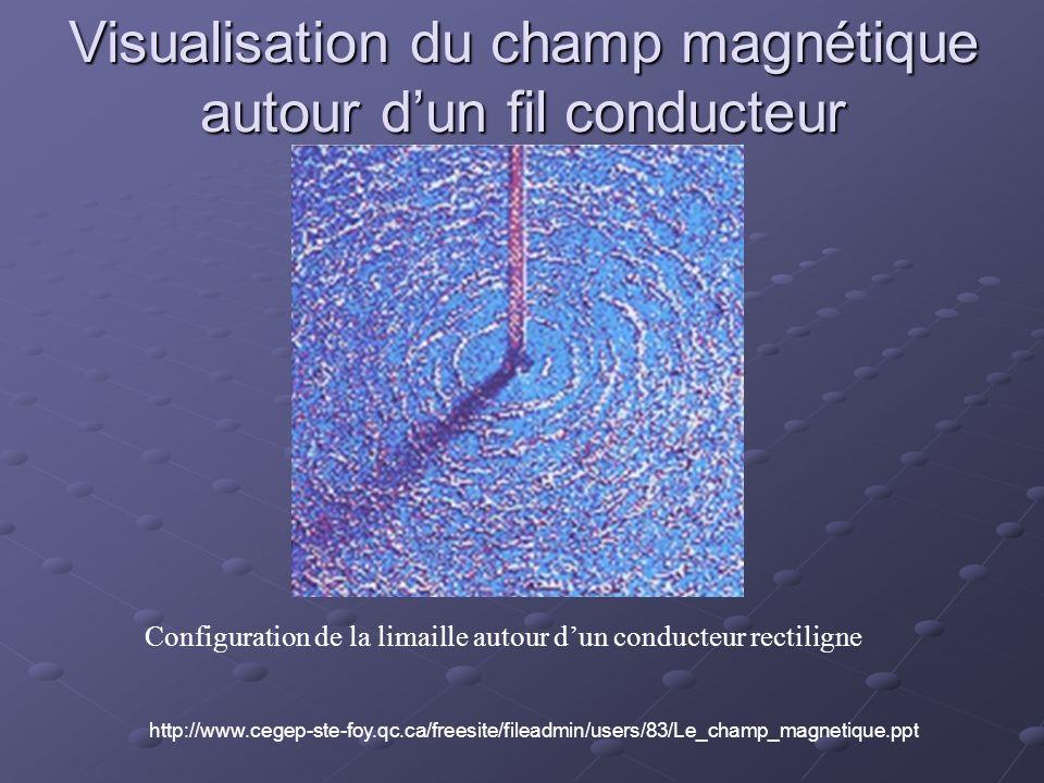 Visualisation du champ magnétique autour d'un fil conducteur