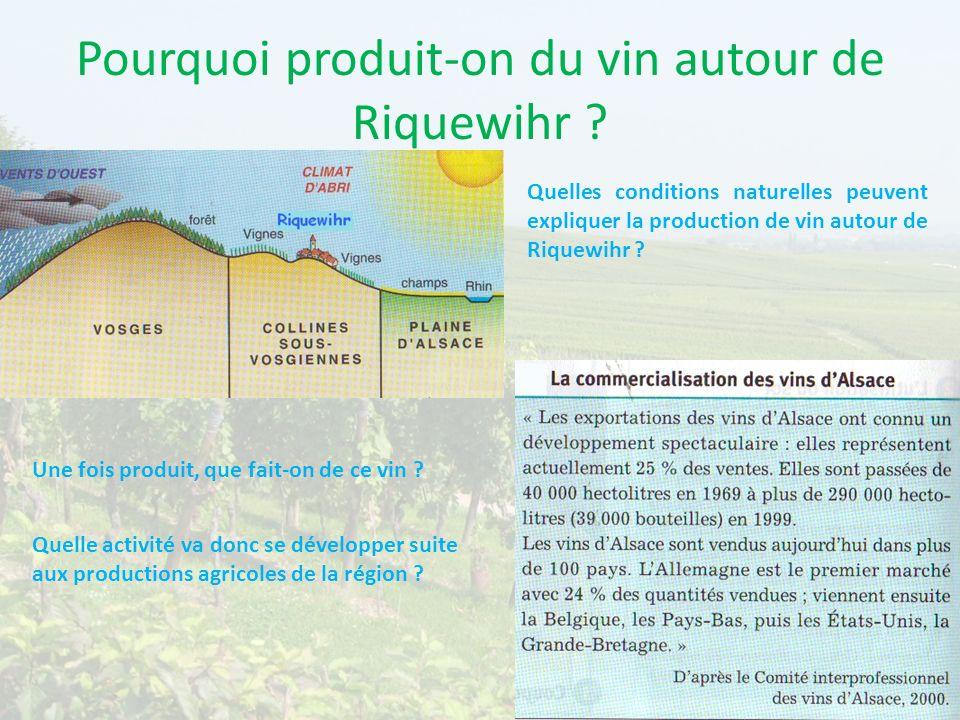 Pourquoi produit-on du vin autour de Riquewihr