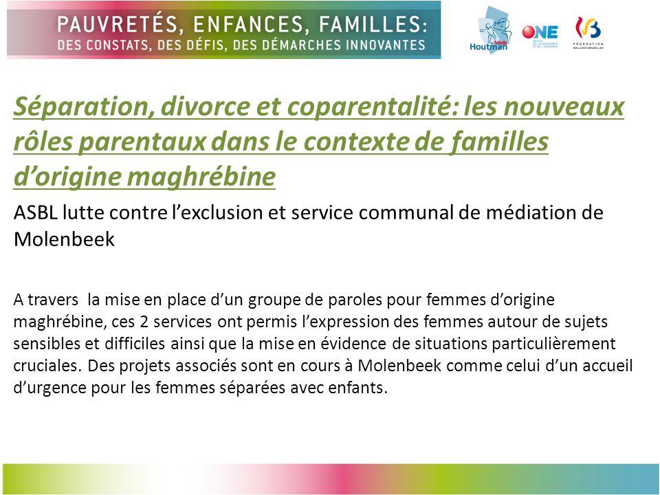 Séparation, divorce et coparentalité: les nouveaux rôles parentaux dans le contexte de familles d'origine maghrébine