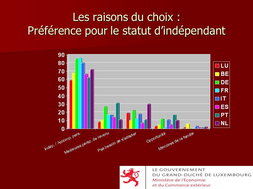 Les raisons du choix : Préférence pour le statut d'indépendant