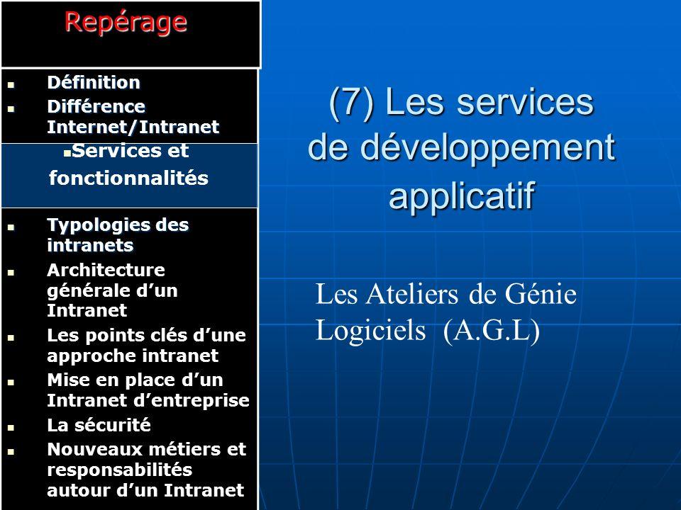 (7) Les services de développement applicatif
