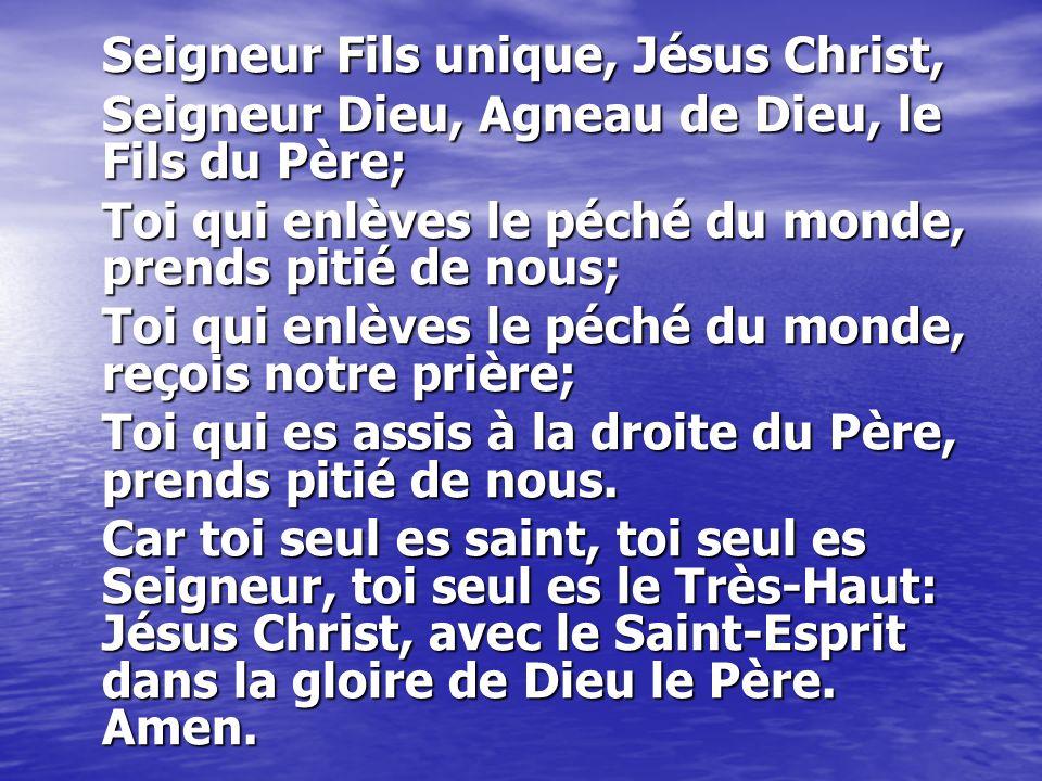 Seigneur Fils unique, Jésus Christ,