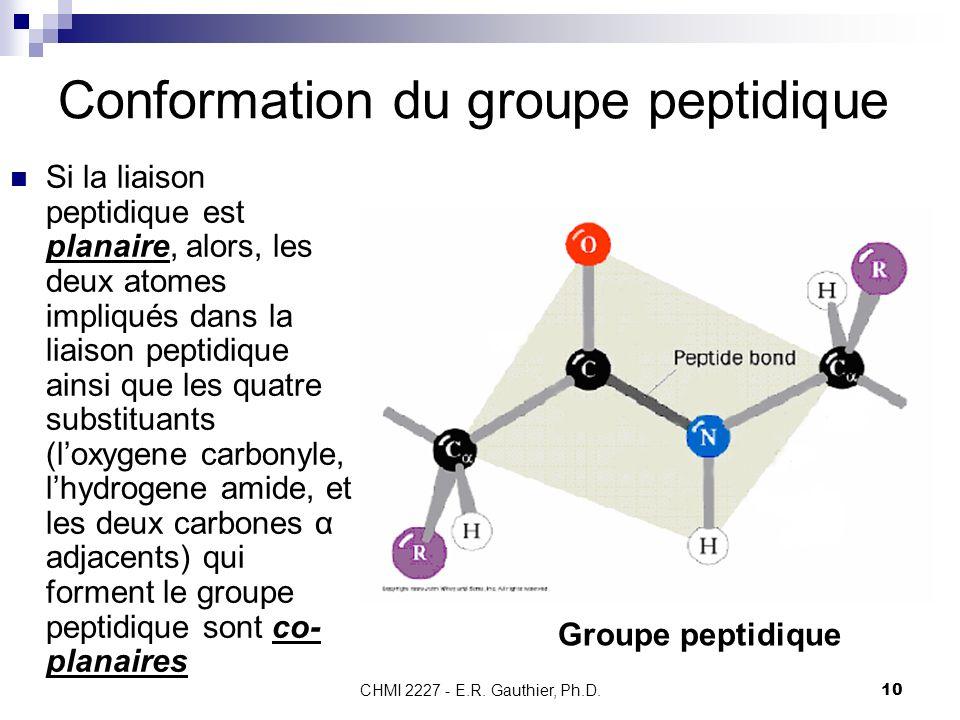 Conformation du groupe peptidique