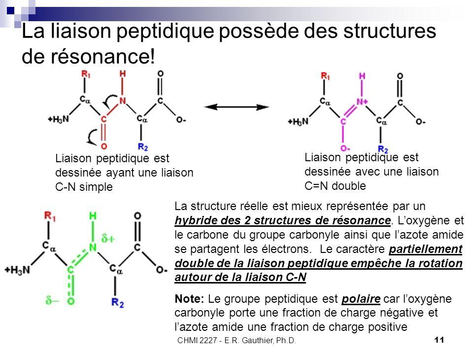 La liaison peptidique possède des structures de résonance!