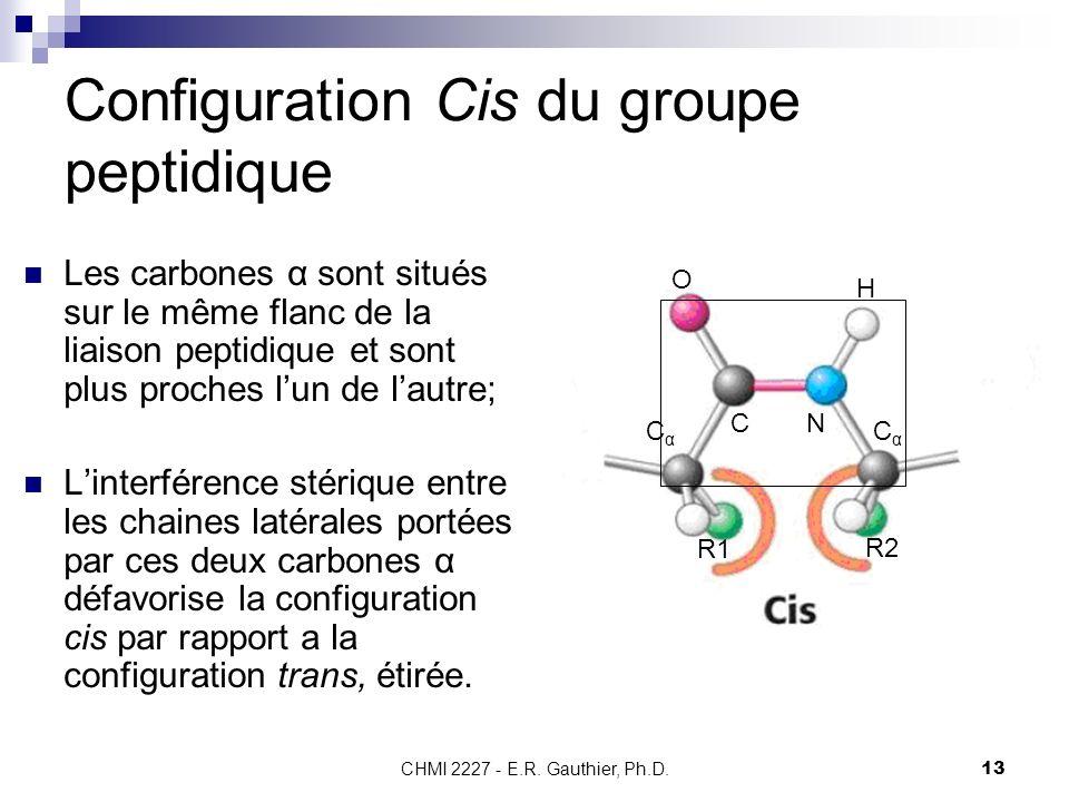 Configuration Cis du groupe peptidique