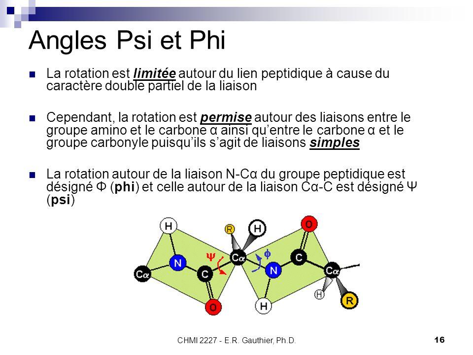 Angles Psi et Phi La rotation est limitée autour du lien peptidique à cause du caractère double partiel de la liaison.