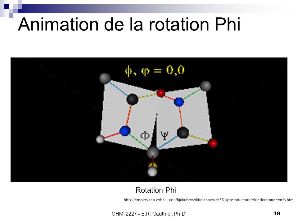 Animation de la rotation Phi