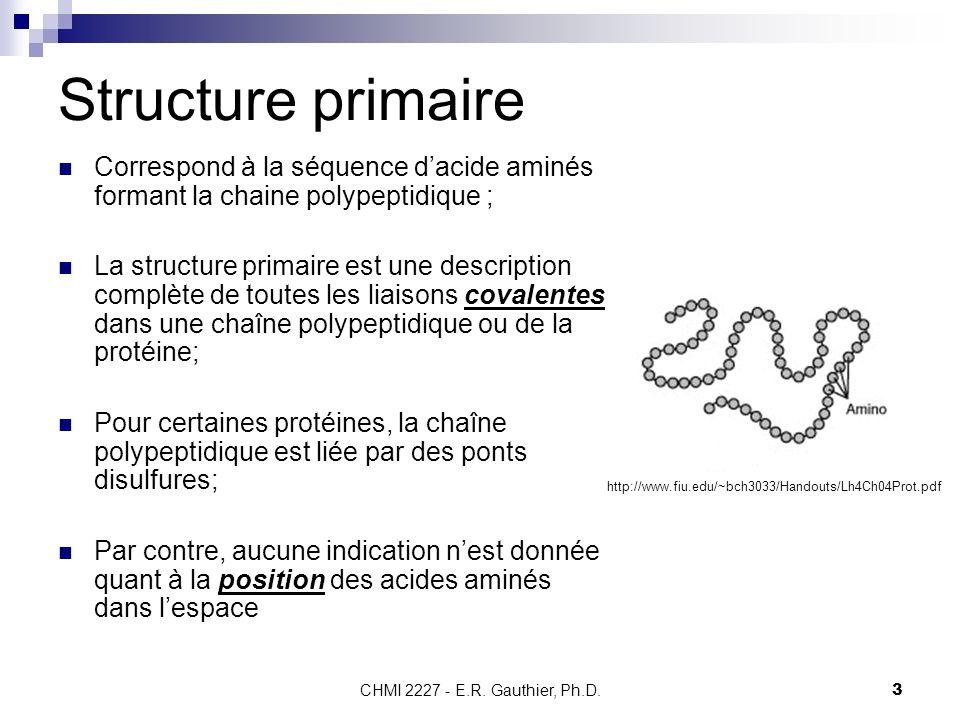 Structure primaire Correspond à la séquence d'acide aminés formant la chaine polypeptidique ;