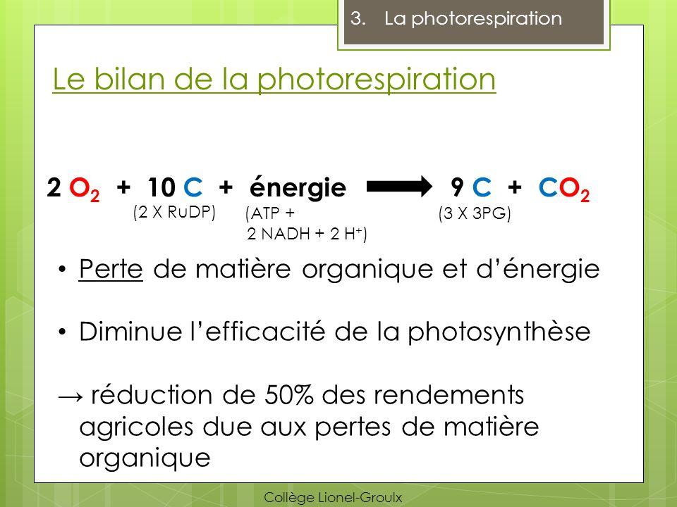 Le bilan de la photorespiration