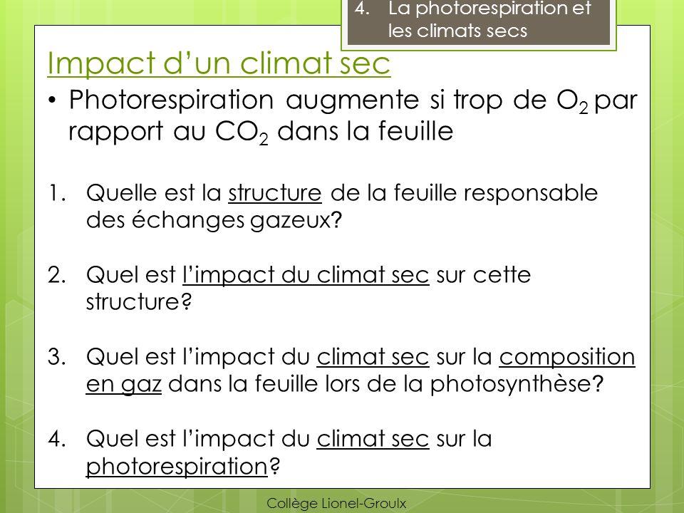 La photorespiration et les climats secs