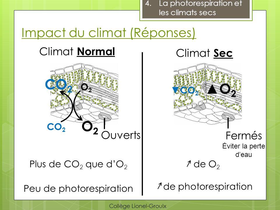 Impact du climat (Réponses)